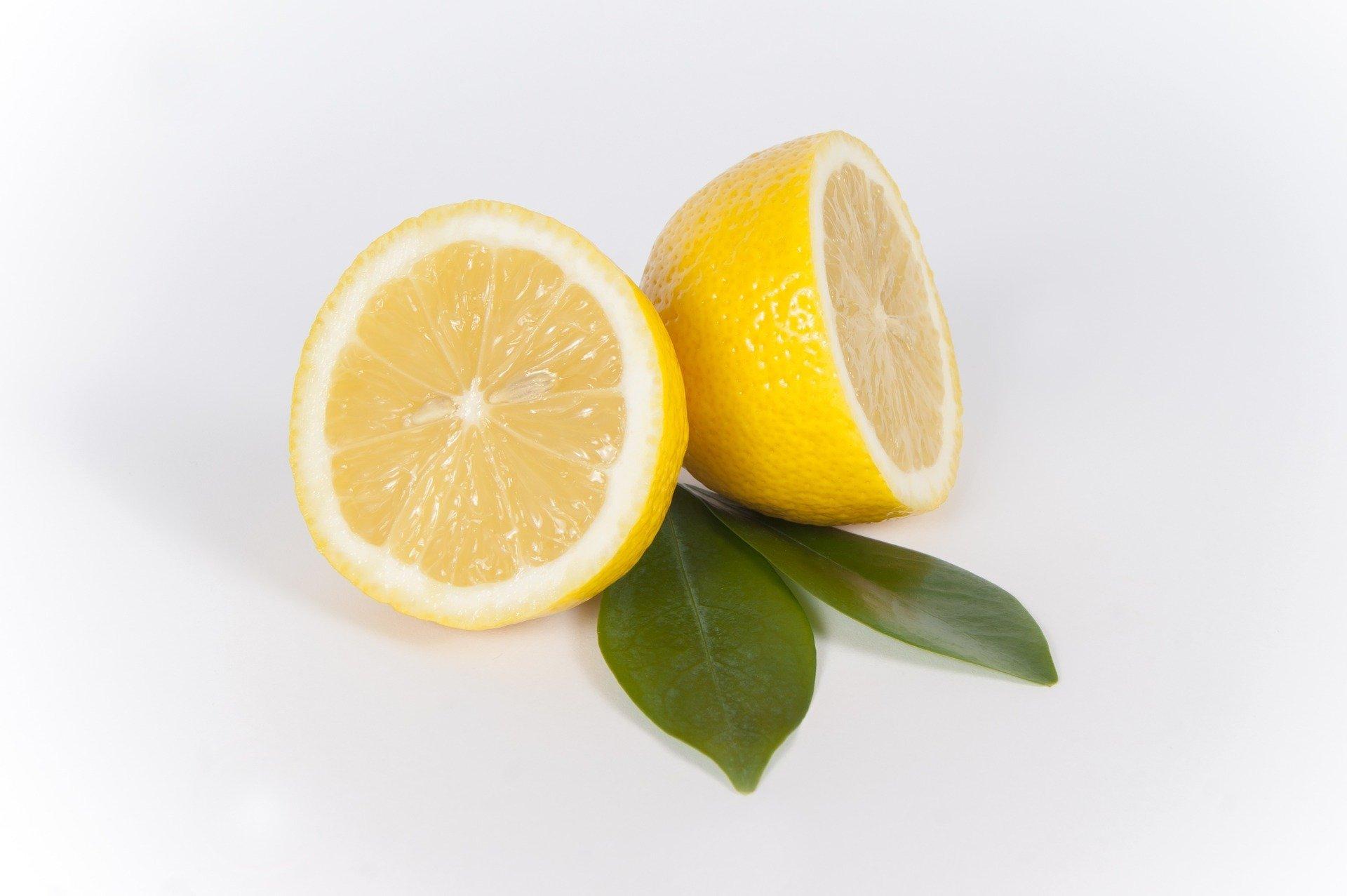 limones2 - Limones Ibizagrove