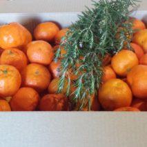 caja-de-clementinas-213x213