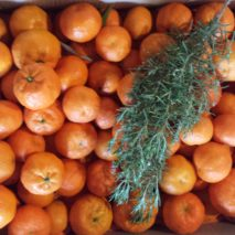 caja-de-clementinas2-213x213
