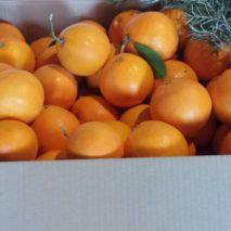 caja-naranjas-de-mesa2-213x213