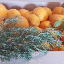 caja-naranjas-de-zumo2-213x213